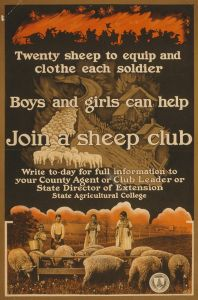 505px-Sheep_club
