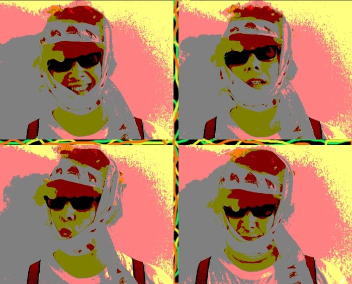 Dadaman Does Warhol